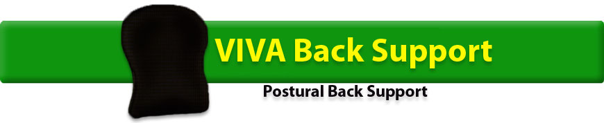 viva-back-supports-title2